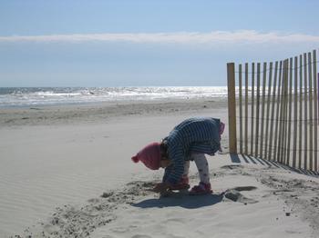 20060219_beach_hilton_head_13.JPG
