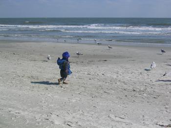 20060219_beach_hilton_head_20.JPG