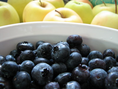 20090729_blueberries_04.JPG