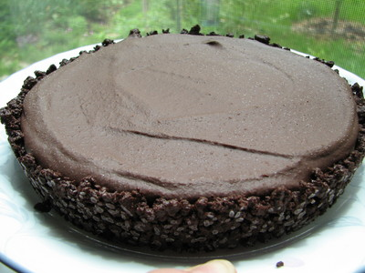 20100514_chocolate tart_27.JPG