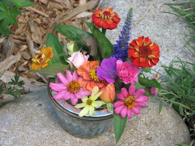 20070713_garden_flowers_3.JPG
